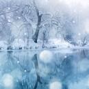 Share the Joy of the Season!